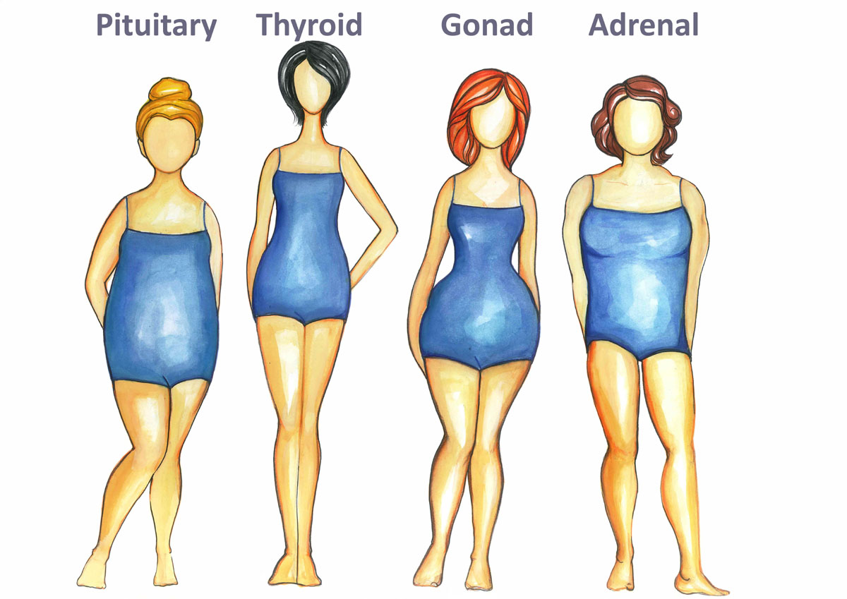 photo How toEat Right for Your Body Shape