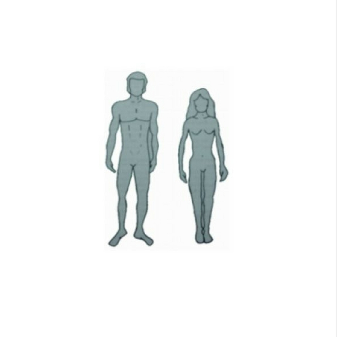 Ectomorph Body Type | Downsize Me