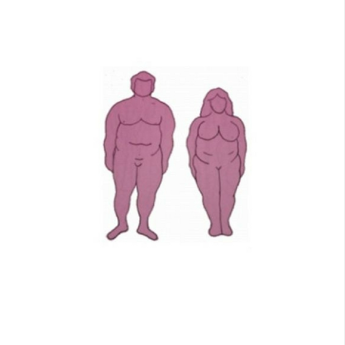 Endomorph Body Type | Downsize Me