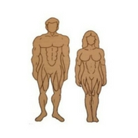 Body Types Explained | Downsize Me
